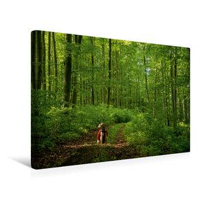 Premium Textil-Leinwand 45 cm x 30 cm quer Das Grüne Band ganz g