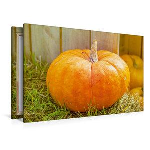 Premium Textil-Leinwand 120 cm x 80 cm quer Halloween Kürbis