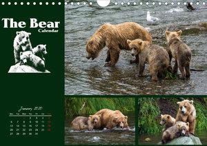 The Bear Calendar / UK-Version (Wall Calendar 2020 DIN A4 Landsc