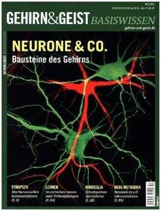 Neurone & Co.