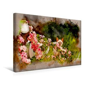 Premium Textil-Leinwand 45 cm x 30 cm quer Kätzchen hinter Blume