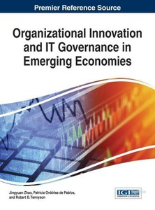 Organizational Innovation and It Governance in Emerging Economie