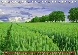 Agrarwirtschaft - Impressionen (Tischkalender 2019 DIN A5 quer)