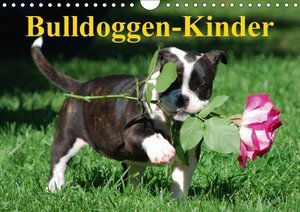 Bulldoggen-Kinder