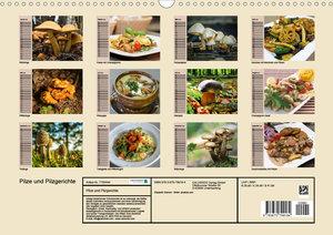 Pilze und Pilzgerichte