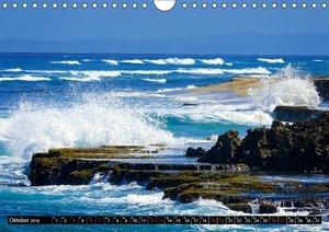 Mein Karibiktraum (Wandkalender 2019 DIN A4 quer)