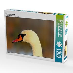 Schwanen König 1000 Teile Puzzle quer