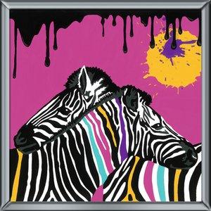 Zebras MnZ Serie Deco