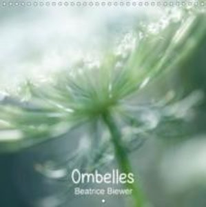 Ombelles (Calendrier mural 2015 300 × 300 mm Square)