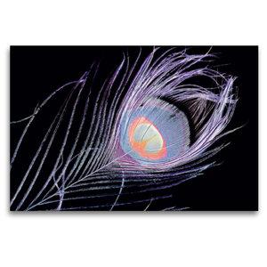 Premium Textil-Leinwand 120 cm x 80 cm quer Buntes Auge