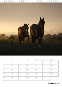 Shire Horses The Gentle Giants (Wall Calendar 2018 DIN A3 Portra