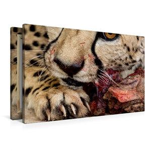 Premium Textil-Leinwand 90 cm x 60 cm quer Wildes Namibia: Gepar