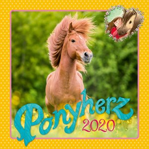 Ponyherz 2020 Wandkalender