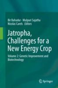 Jatropha, Challenges for a New Energy Crop 2