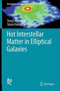 Hot Interstellar Matter in Elliptical Galaxies