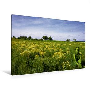 Premium Textil-Leinwand 120 cm x 80 cm quer Brachfläche bei Gast