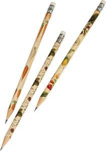 Kew Gardens Bleistifte in Geschenkschachtel