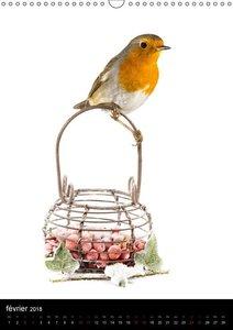 Le jardin aux oiseaux (Calendrier mural 2018 DIN A3 vertical) Di