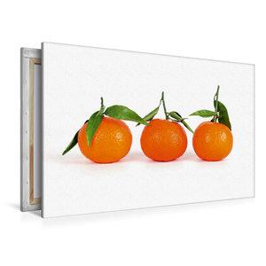 Premium Textil-Leinwand 120 cm x 80 cm quer Drei Mandarinen