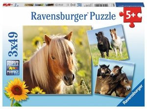 Ravensburger 080113 - Liebe Pferde, 3x49 Teile, Kinderpuzzle