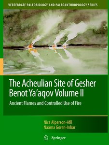 The Acheulian Site of Gesher Benot Ya'agov Volume II