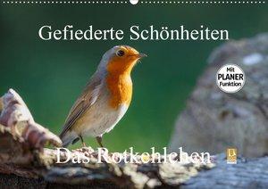 Gefiederte Schönheiten - Das Rotkehlchen / Planer
