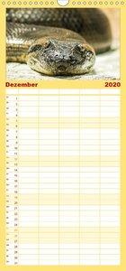 Tierische Momentaufnahmen - Familienplaner hoch (Wandkalender 20