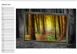 Alles im Rahmen - Sonne im Wald / Geburtstagskalender