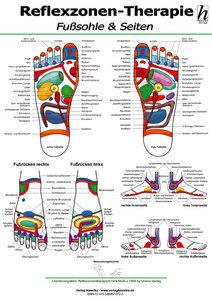 Reflexzonen-Therapie Poster - Fußsohle & Seiten DIN A2