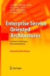 Enterprise Service Oriented Architectures