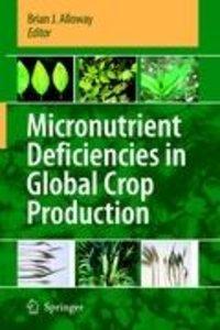 Micronutrient Deficiencies in Global Crop Production