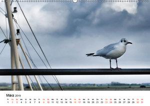 Wieder an der Nordsee (Wandkalender 2019 DIN A2 quer)
