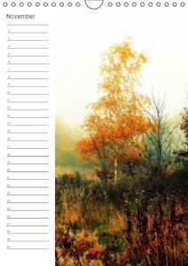 Malerisches Teufelsmoor (Wandkalender immerwährend DIN A4 hoch)