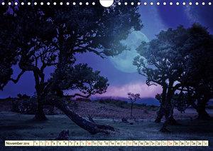 Mystische Wälder - Zauber der Natur (Wandkalender 2019 DIN A4 qu