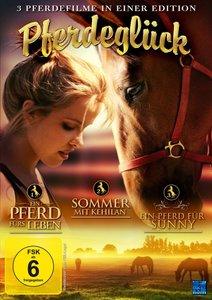 Pferdeglück - Ein Pferd fürs Leben, Sommer mit Kehilan, Ein Pfer