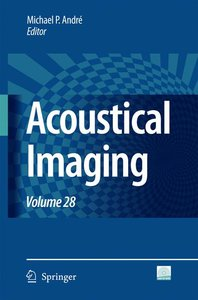 Acoustical Imaging 28