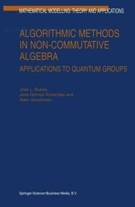 Algorithmic Methods in Non-Commutative Algebra