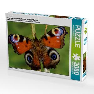 """Tagpfauenauge zeigt seine bunten \""""Augen\"""" 2000 Teile Puzzle que"""