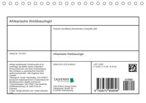Afrikanische Weißbauchigel (Tischkalender 2020 DIN A5 quer)