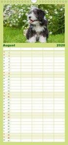 Welpen 2020 - Familienplaner hoch (Wandkalender 2020 , 21 cm x 4