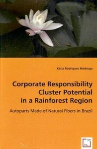 Corporate Responsibility Cluster Potential in a Rainforest Regio