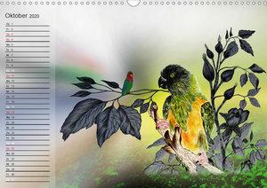 Papageien Zeichnungen