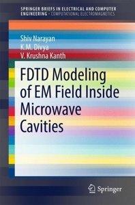 FDTD Modeling of EM Field inside Closed Microwave Cavities