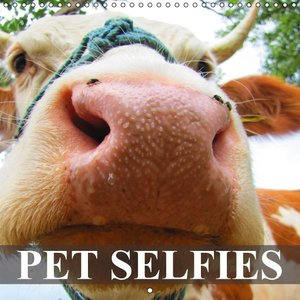 Pet Selfies (Wall Calendar 2015 300 × 300 mm Square)
