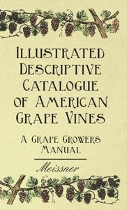 Illustrated Descriptive Catalogue of American Grape Vines - A Gr