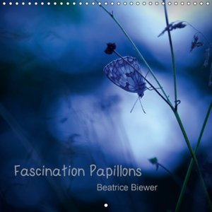 Fascination Papillons (Calendrier mural 2015 300 × 300 mm Square