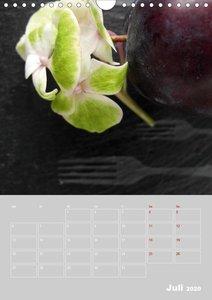 Renaissance der Hortensie (Wandkalender 2020 DIN A4 hoch)