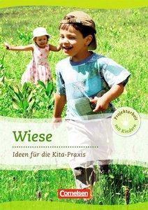 Projektarbeit mit Kindern. Projekt: Wiese