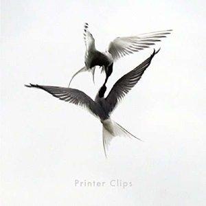 Printer Clips