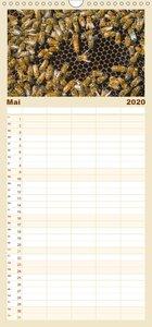 Die Welt der Imkerei: Blüten, Bienen, Honig - Familienplaner hoc